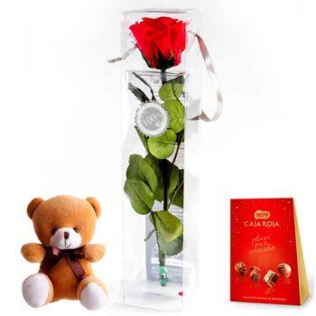 enviar rosas roja preservada